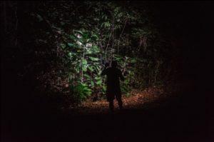 Foto Hutan Wosi, Kabupaten Manokwari, karya Meisye Evelyne Alfian ditampilkan pada acara #IniTanahKita: Memotret Isu Lahan di Papua Barat pada hari Minggu, 11 Agustus 2019, di Swiss-Belhotel, Manokwari (Photo: Meisye Evelyne Alfian)