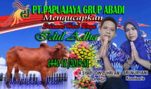 papuajaya.com